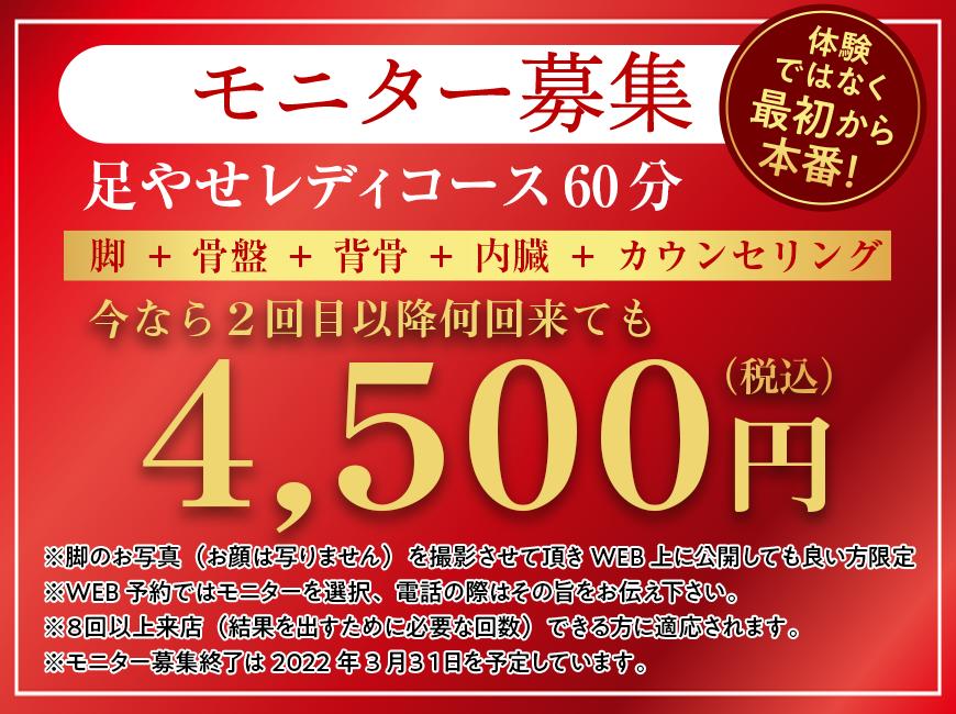 モニター募集 4,000円